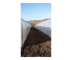Solarii pt legume si flori model Ungaria ieftine - Poza 3/4