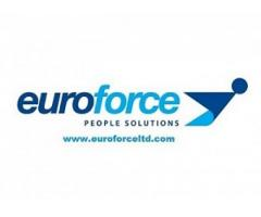 Euroforce (Anglia) angajeaza - Poza 1/2
