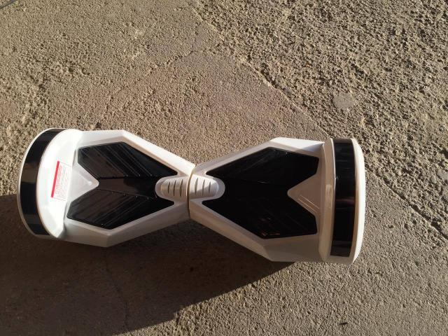 Hoverboard Mover L SegWay - 1/2