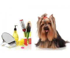 Cosmetica canina si felina la domiciliu