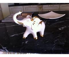 Elefant Showroom Classlife