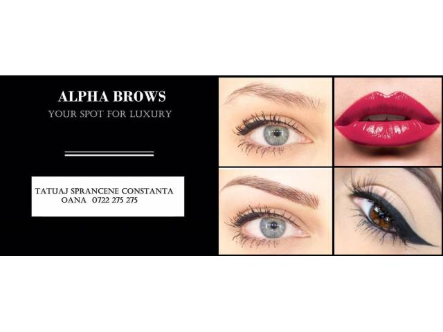 Tatuaj Sprancene Microblading - ALPHA BROWS - 5/5