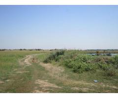 Teren agricol 43.300 mp, Bolintin-Deal, Giurgiu