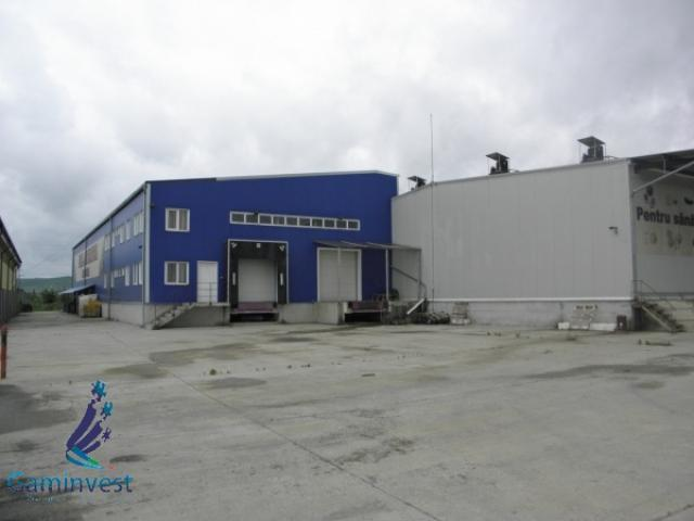 Vand hala industriala / depozit frig, in Oradea - 2/5