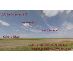 Arenda 220 ha teren in Timis