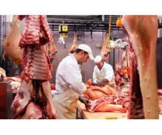 Angajam personal in industria alimentara, Germania