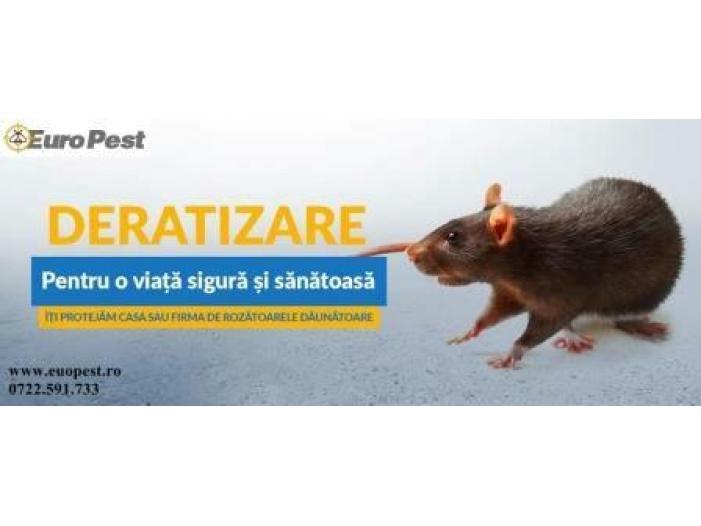 Dezinsectie si Deratizare in Bucuresti - 2/3