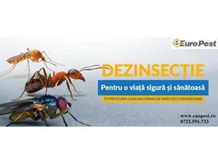 Dezinsectie si Deratizare in Bucuresti - 3/3