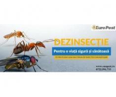 Dezinsectie si Deratizare in Bucuresti - Poza 3/3