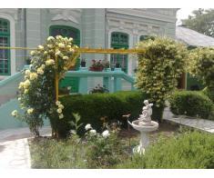 Vand casa+teren, Vaslui, gard in gard cu Gradina Copou