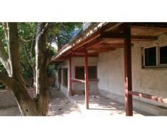 Casa si teren 3698 mp, Giurgiu