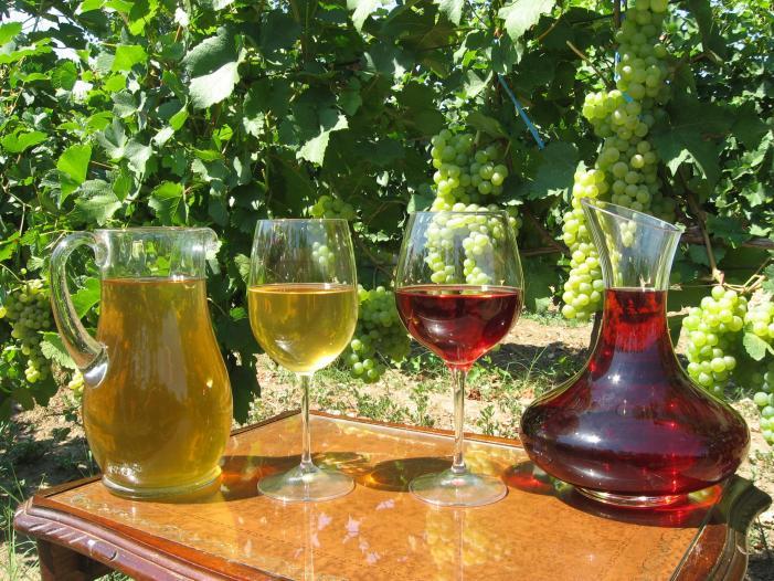 Vand struguri de vin Tamboesti, Vrancea 2017. - 3/5