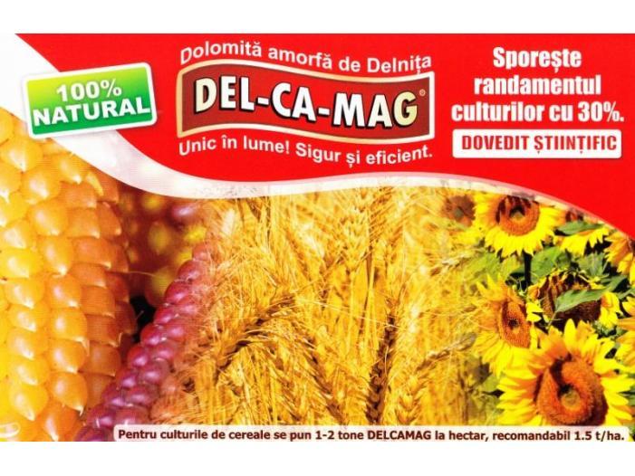 delcamag dolomita amorfa - 2/2