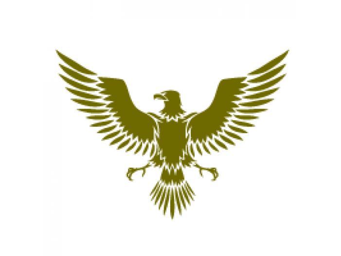 Agentia de detectivi Eagle - 1/1
