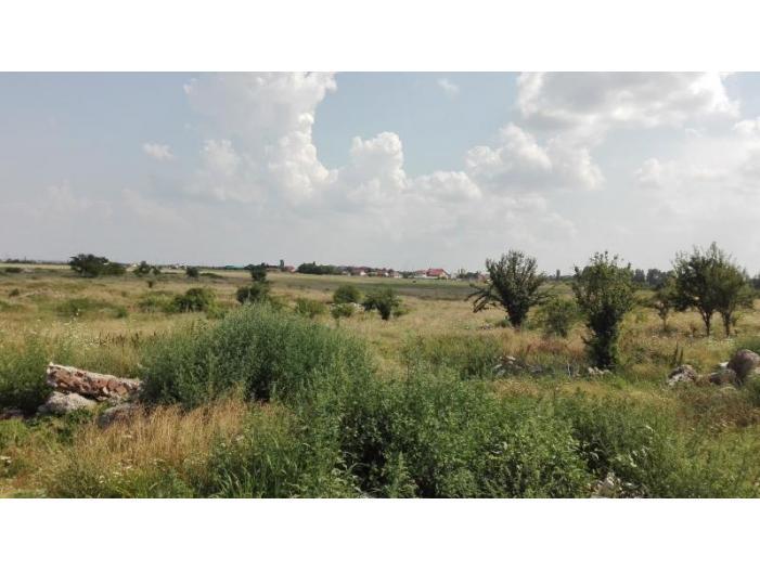 Teren intravilan 30900 mp, sat Livada, Arad - 1/1