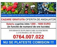 Oferta de munca in SPANIA - salariu cuprins intre