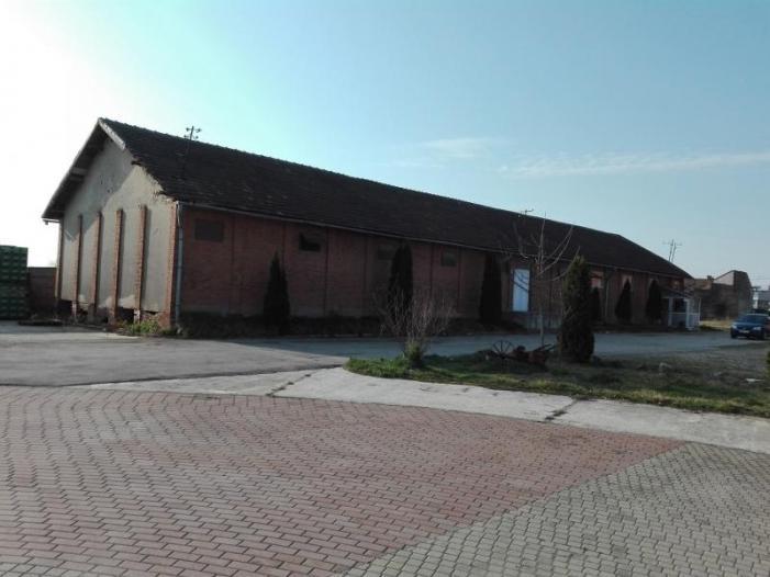 Teren 11660 mp si constructii industriale, Lugoj, Timis - 1/1