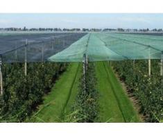 Plasa protectie - umbrire 1,5x10 metri, opacitate 90%, verde