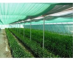 Plasa protectie - umbrire 1,5x20 metri, opacitate 90%, verde
