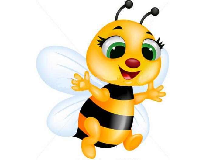 Vanzari familii albine - 1/1
