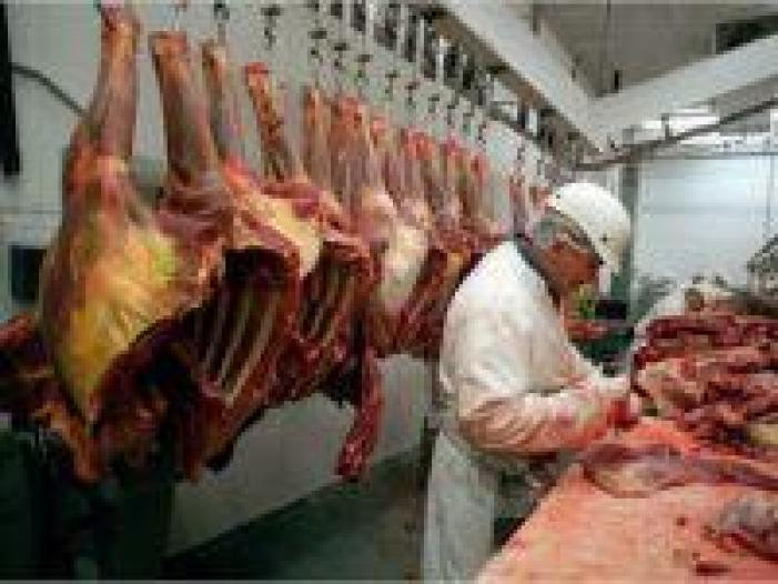 Se cauta barbati la dezosat porc in abator in Olanda-1600EUR/luna net - 1/1
