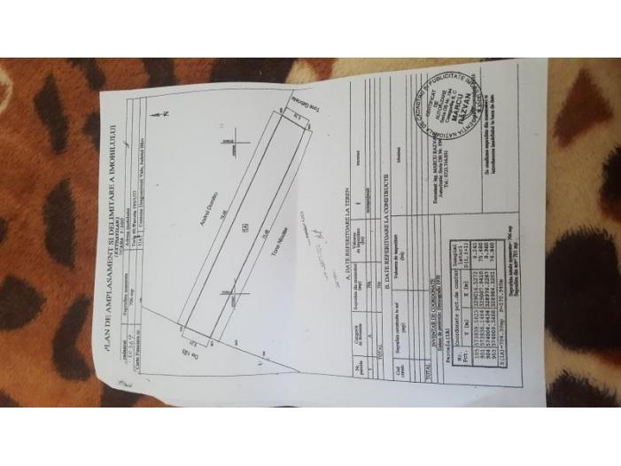 Vand terenuri, ciorogarla, dragomiresti - deal ilfov (0771407206) - 2/3