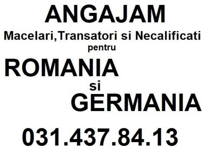 Angajam Necalificati Romania si Germania - 1/1