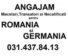 Angajam Necalificati Romania si Germania