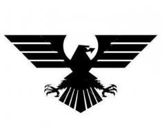 AGENTIA  DE  DETECTIVI  EAGLE  ARAD
