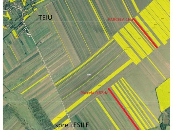 Vand teren agricol 1.87Ha, Teiu, Arges, 2 parcele, cadastru - 1/1