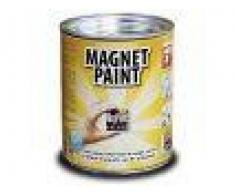 Vopsea magnetica 0.5l MagPaint  pentru 1mp in 2-3 straturi