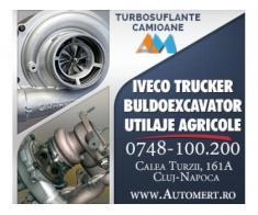 Service Auto Cluj autorizat RAR