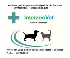Sterilizari gratuite pentru caini si pisici 29.10 – 16.12 2018 – Bucuresti