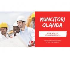 MONTATORI ACOPERIS OLANDA - de la 2100 - 2400 euro/luna