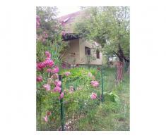 Casa de vacanta la cheie,3 cam,la 3 km de Bran
