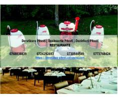 Deratizare restaurante Pitesti
