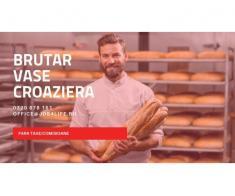 BUCATARI VASE CROAZIERA - INTERVIURI CONSTANTA