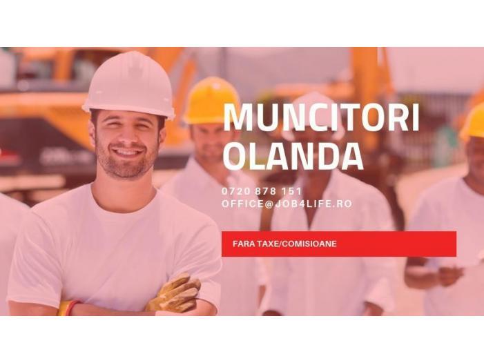 MUNCITORI STRUCTURI METALICE OLANDA - 1/1