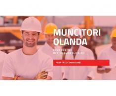 MUNCITORI STRUCTURI METALICE OLANDA
