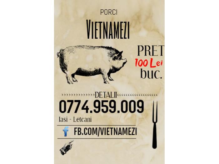 Vand Purcei Vietnamezi - 4/4
