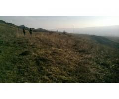 Vanzare teren Fanatele Clujului