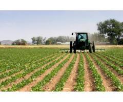 Agricultura italia si germania