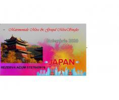 Vacanta in Japonia – noiembrie 2020 -  magia toamnei