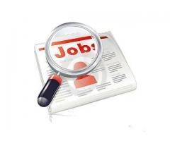 Locuri de munca in Strainatate;Urgent